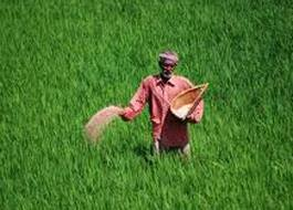 Fertilizers use by crop in Pakistan