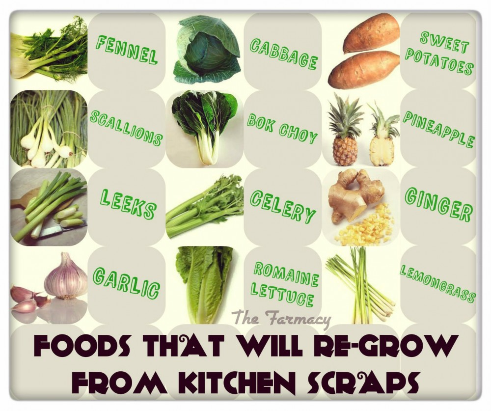 Grow Fruits And Vegetables From Kitchen Scraps