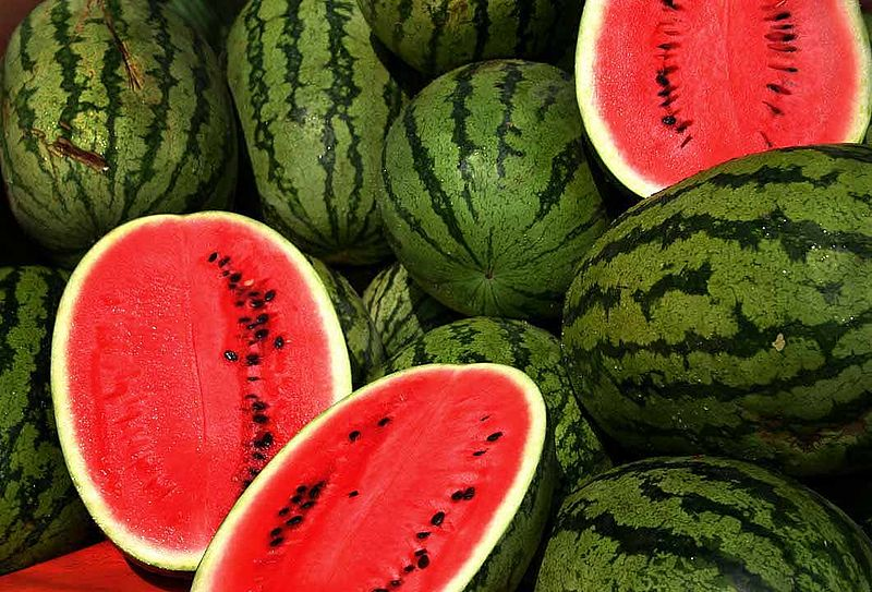 Growing Watermelon in the Home Garden