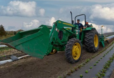 Sustainable Farming and Green Techniques and the Community