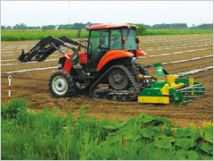 Helping Revitalize Regional Economies through a Broader Approach to Agribusiness