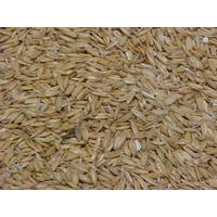 Pure Hulled Oats available in Pakistan