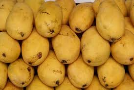 Pakistan all set to export mango to South Korea