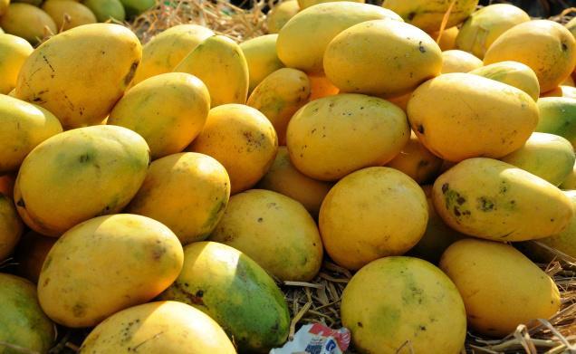 Taste of Pakistani mango' held in Seoul