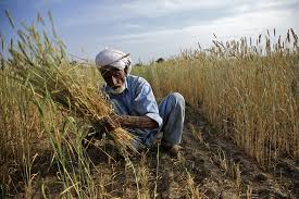 Securing land rights for the world's  poorest people