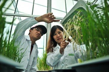 Largest-ever philanthropic investment into budding rice scientists