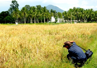 IRRI-ADB Project holds video production workshop for outscaling postharvest technologies