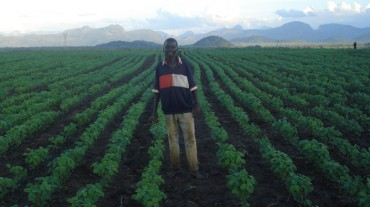 Innovation for Agribusiness (INOVAGRO) Private Sector-Led Rural Growth in Northern Mozambique