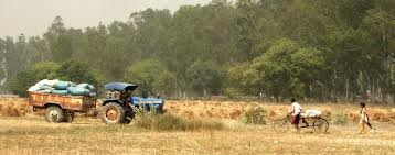 Agri sector suffered Rs 219b loss in 2012