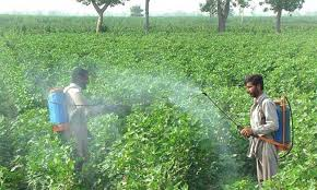 Govt moves against toxic pesticides