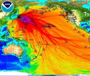 Fukushima Radiation: Your Days of Eating Pacific Ocean Fish Are Over, Or Worse….