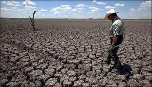 Namibia: Drought Severe On Agriculture