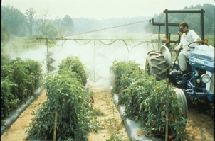 Study Finds Link Between Herbicide Exposure and Depression