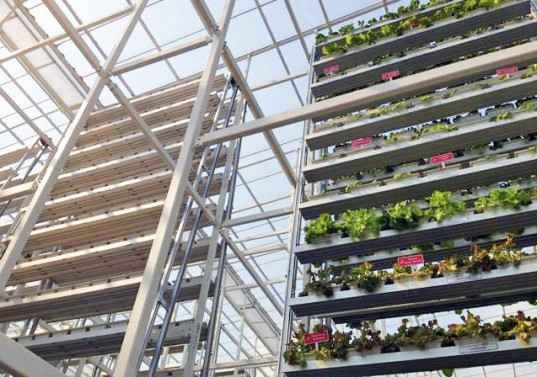 The World's First Commercial Vertical Farm Opens in Singapore