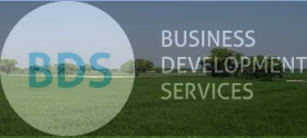 What are Business Development Services (BDS)
