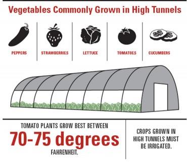 High Tunnels Farming Lengthen Season for Growers
