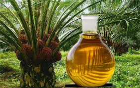 Pakistan important market for Malaysian palm oil