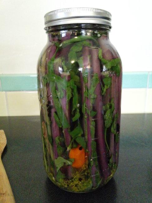 Pickled Habanero Kale Stalks