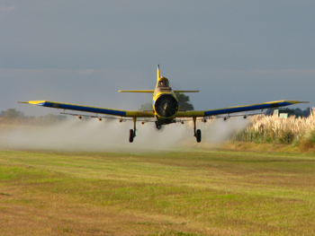 Studies Find Pesticides Lower IQ and Cause Neurological Disorders