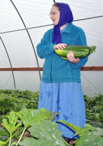 Tunnel to growth — High tunnels produce bountiful results