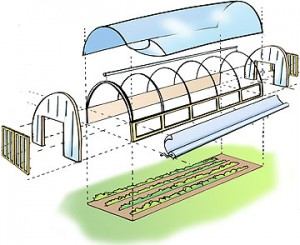 Agribusiness Tunnel Farmings And Equipments