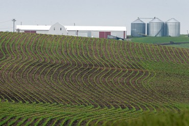 Factory Farms :Taxpayers Pay, Politicians Take, Agribusiness Profits