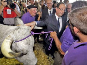 Landscape of French farming set to change as President François Hollande channels subsidy to smaller producers