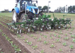 Garford InRow Robocrop Machinery In Agribusiness