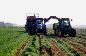 Gujarat farmers set to go Hi-Tech with the help of Israeli Green tech