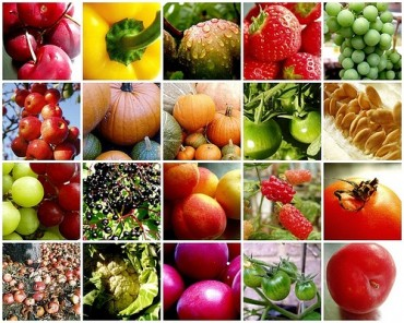 Up to 80 percent price hike registered in all varieties of fruits