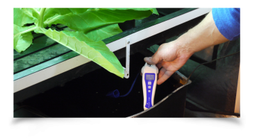 What is ideal PH in all hydroponic applications