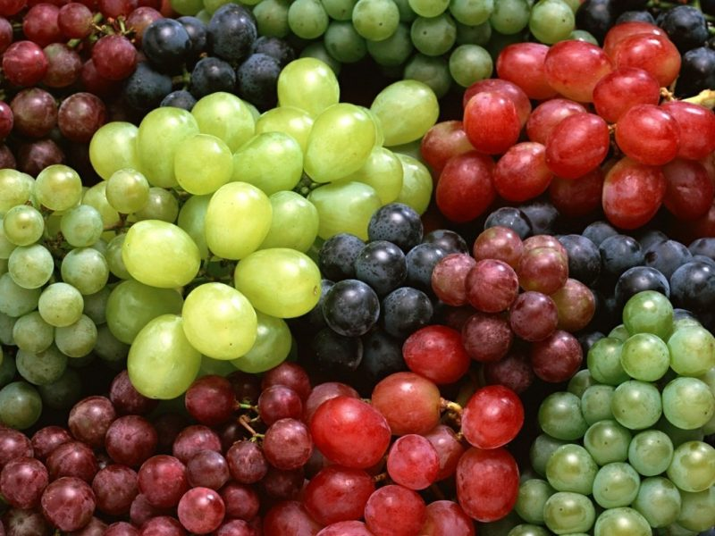 Varieties of Grapes in Pakistan
